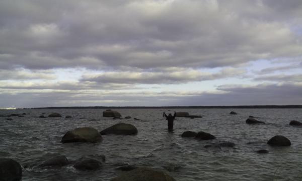 рыбалка на финском заливе мыс дубовской